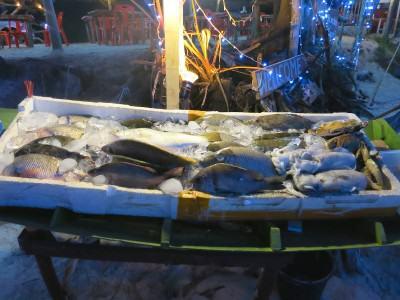 Auslage mit Fisch in einem Strandrestaurant in Thailand