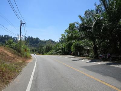 Typische Natur in Thailand
